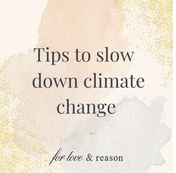 Tips to slow down climate change
