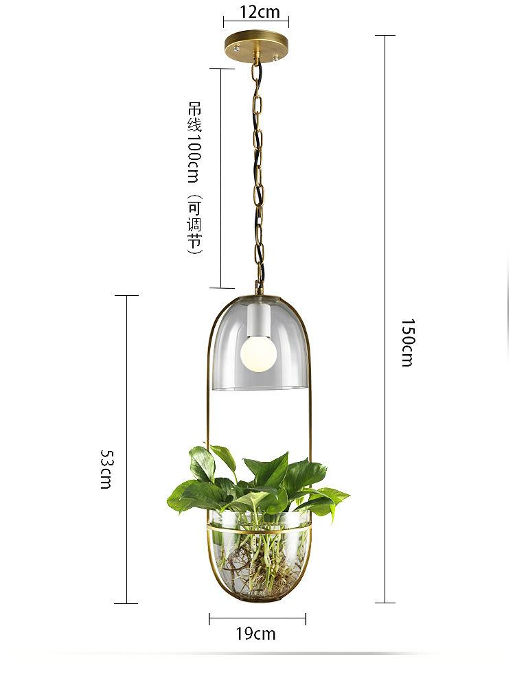 Wrought Iron and Glass Hanging Hydroponic Plant Chandelier | I'm Spoiled - Sp-oiled!