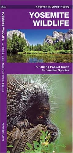 Yosemite Wildlife: A Folding Pocket Guide To Familiar Species (A Pocket Naturalist Guide)