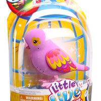 Little Live Pets Bird #6 Sweet Sophie Single Pack Playset