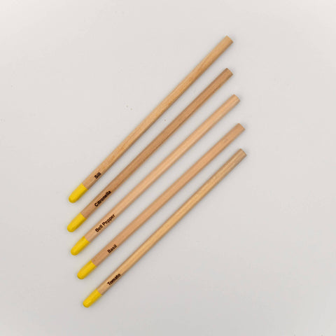 Seedcraft Pencil