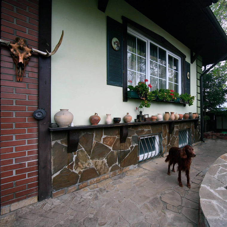 Siurha Art Valery house with dog