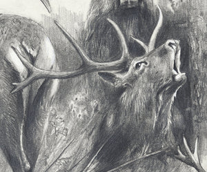 "Author's signed print ""Red Deer"""