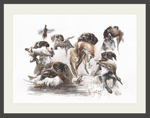 "Author's print ""German wirehaired pointer. Aport"""