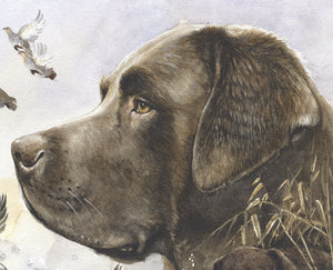 "Author's print ""Bird Hunt Chocolate Labrador"""