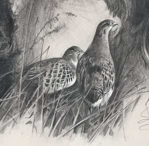 "Author's print ""Bird Hunting. Griffons"""