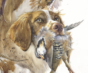 "Author's print ""Brittany. Bird hunting"""