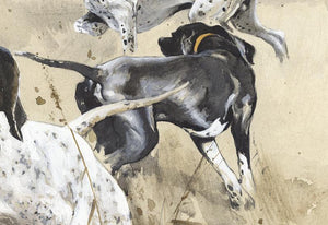 "Author's print ""English Pointers"""