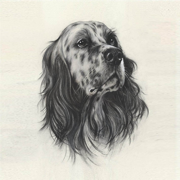 "Author's print ""English Setter. Portrait"""