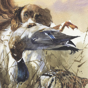 "Author's print ""English Springer Spaniel. Hunting"""
