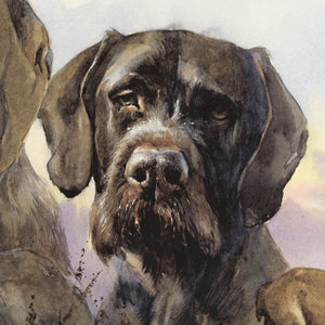 "Author's print ""German Wirehaired Pointer. Hunting Memories"""