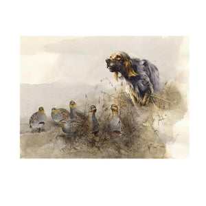 "Author's print ""Meeting with partridges. English Setter."""