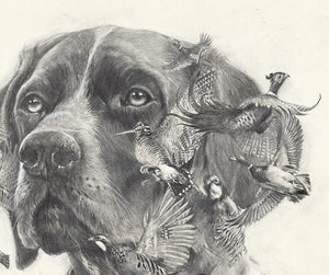 "Author's print ""Oh. my dreams ...German Shorthaired Pointer"""