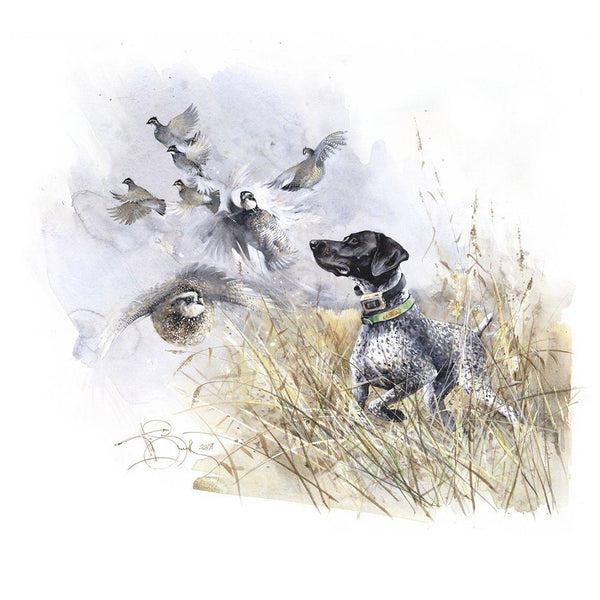 "Author's print ""Quail Hunting. GSP"""