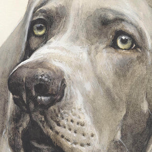 "Author's print ""Weimaraner hunt"""