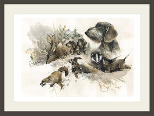 "Author's print ""Wirehaired Dachshund. Hunting"""