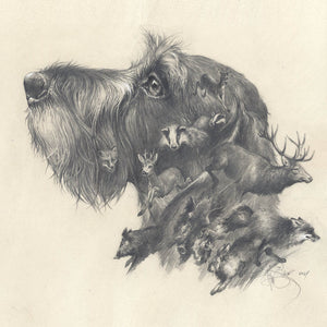 "Author's print ""Wirehaired Dachshund. Oh, my dreams..."""