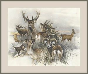 "Author's signed print ""Trophy Hunting"""