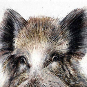 "Author's signed print ""Wild Boar"""