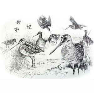"Author's print ""Snipe"""