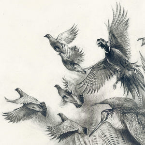 "Author's print ""Wild birds"""