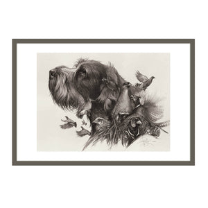 "Author's print ""Oh, my dreams...Spinone Italiano"""