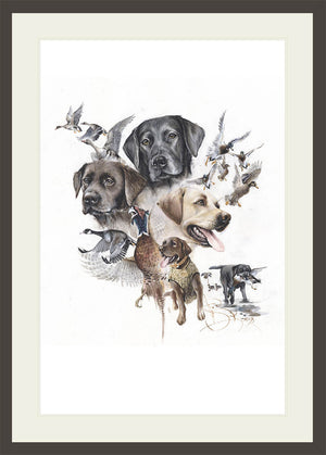 "Author's print ""Hunting with the Labs"""