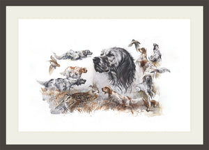 "Author's print ""Hunting with the English Setter"""