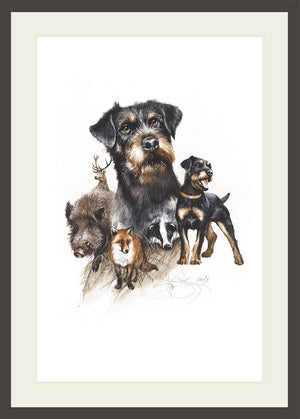 "Author's print ""Jagdterrier"""