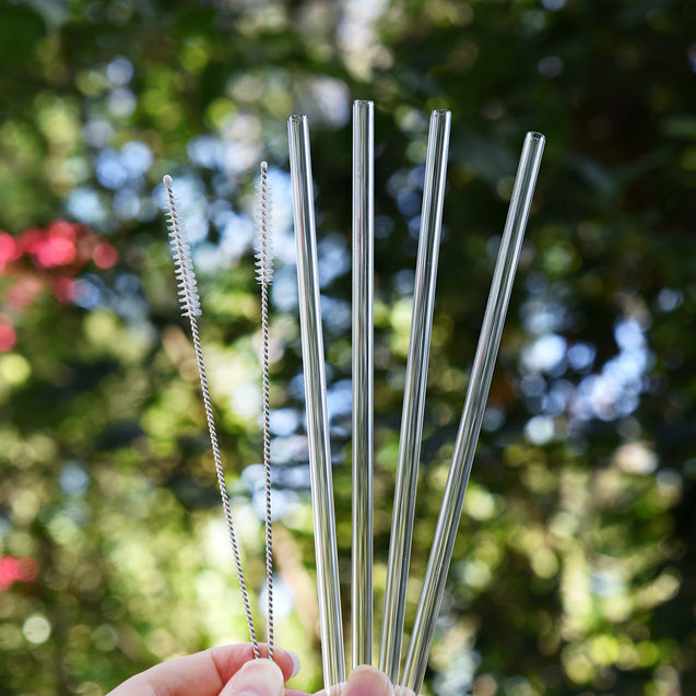 hands holding four straight glass straws and 2 cleaning brushes during the day outdoors