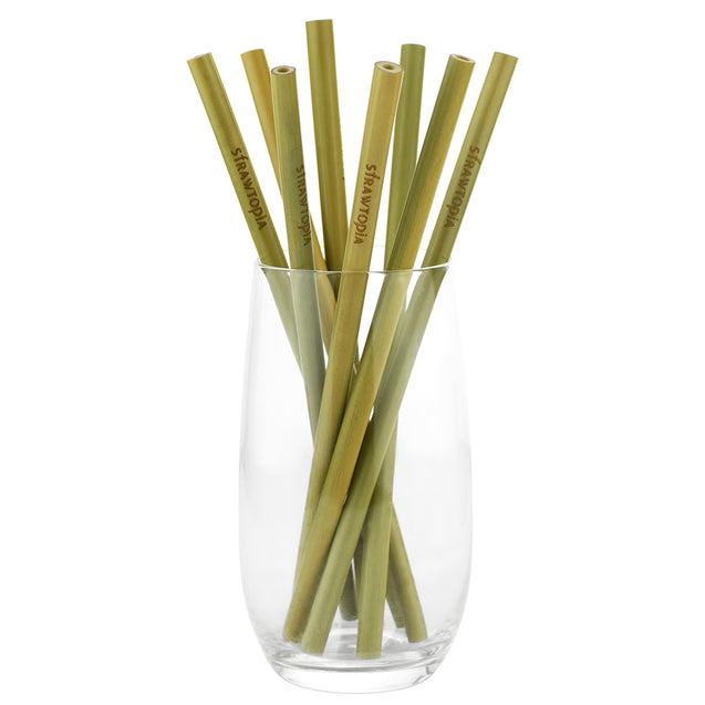 8 Strawtopia Bamboo Straws 7.7 inches in glass cup
