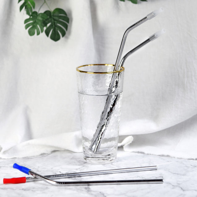 Reusable Stainless Steel Metal Straws with Silicon Tips & Cleaning Brushes — STRAWTOPIA