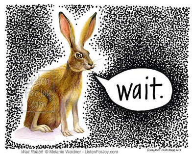 Jack Rabbit Says Wait?