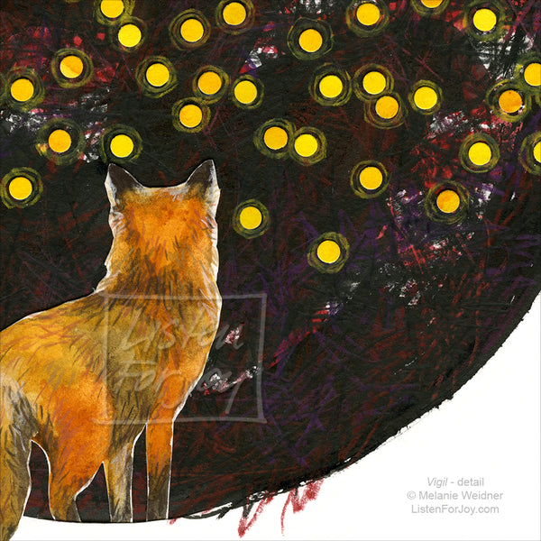 Fox looks at points of light in the dark