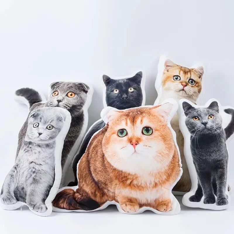 Custom Funny Cat Face Pillow