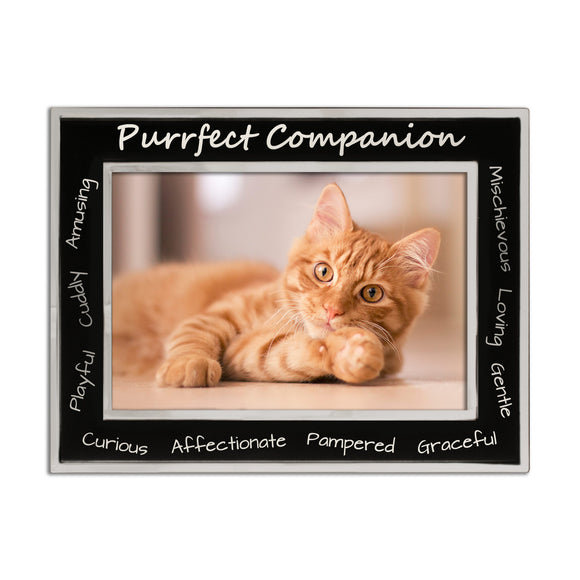 Cat - Purrfect Companion Silver Plated, Black and Silver Photo Frame - engraving-gallery.com