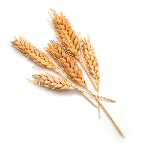 hydrolyzed wheat bran