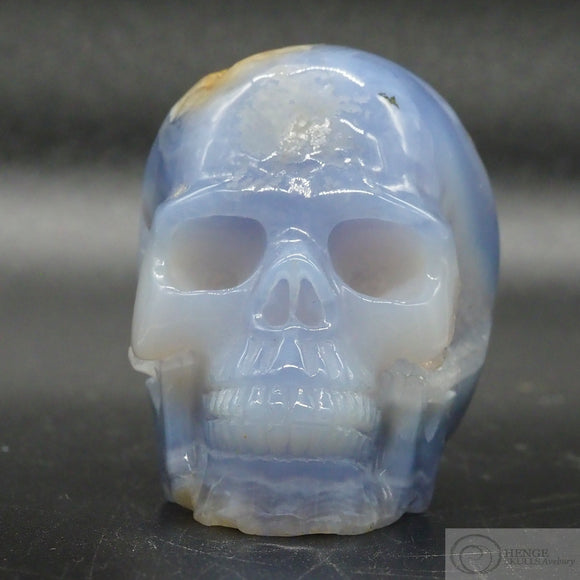 Blue Lace Agate Human Skull