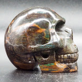 Fossilised Wood Human Skull
