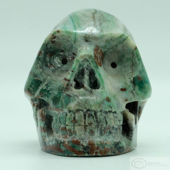 Fossilized Wood Skull