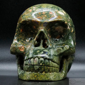 Rainforest Jasper Human Skull