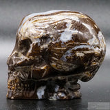 Tree Leaf Agate Star Being Skull