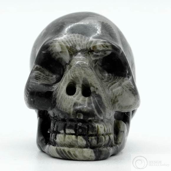 Frosterly Marble Skull