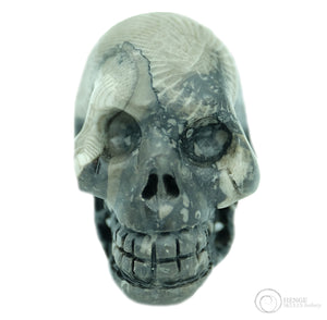 Frosterley Marble Skull