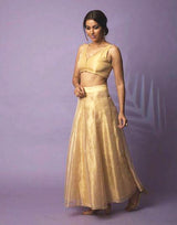 Shamila Gold Tissue Skirt and Blouse