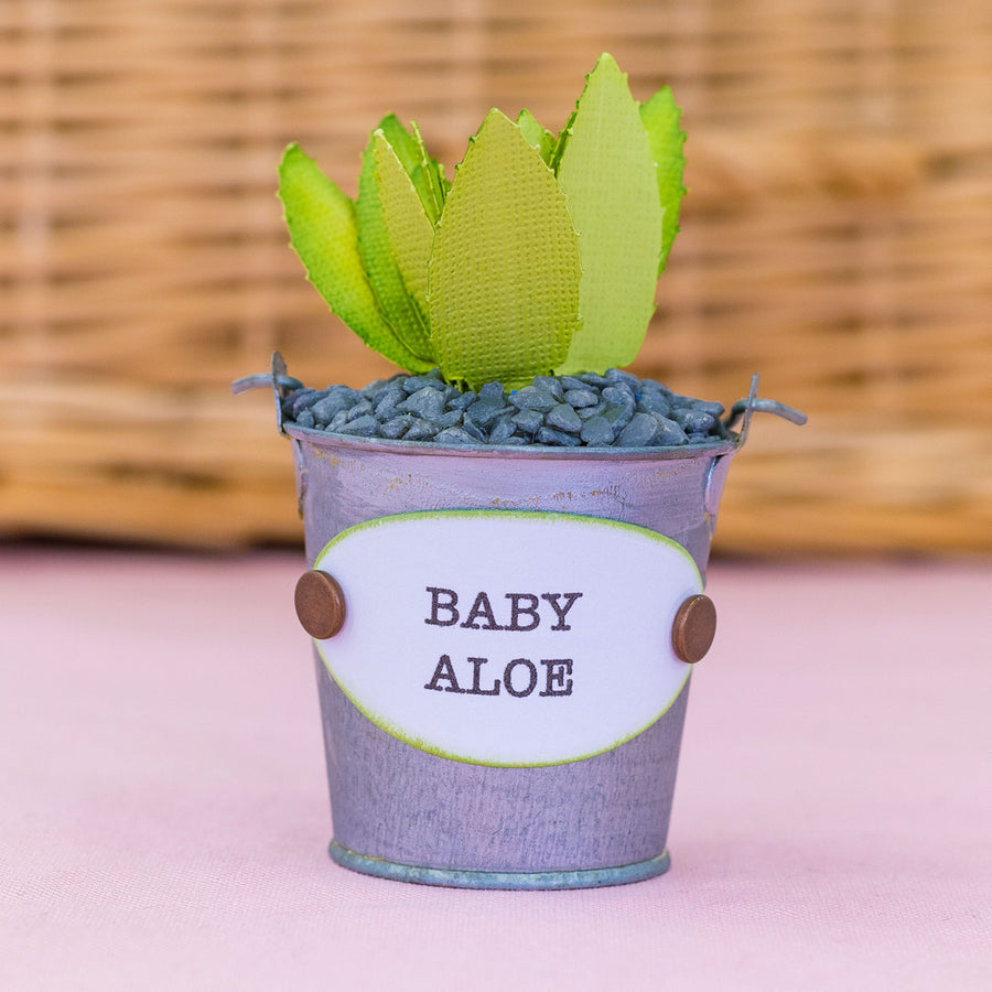 Sharon Callis Crafts Dies - Sensational Succulents - Gift and Pot Labels