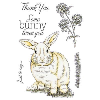 Crafters Companion Stamp - Some Bunny Loves You