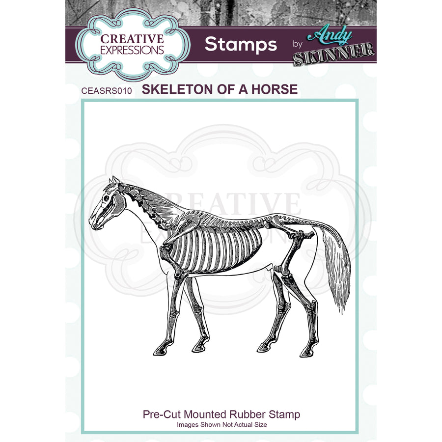Andy Skinner by Creative Expressions - Skinner Skeleton of a Horse