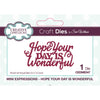 Sue Wilson Dies - Mini Expressions Collection - Hope Your Day is Wonderful - CEDME047
