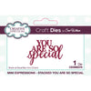 Sue Wilson Dies by Creative Expressions - Mini Expressions - Stacked You Are So Special - CEDME079